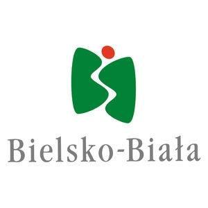UM Bielsko-Biała - wycinka